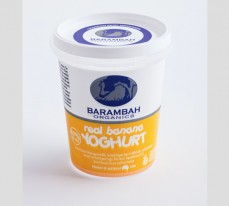 Real Banana Yoghurt
