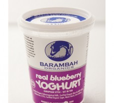 Real Blueberry Yoghurt